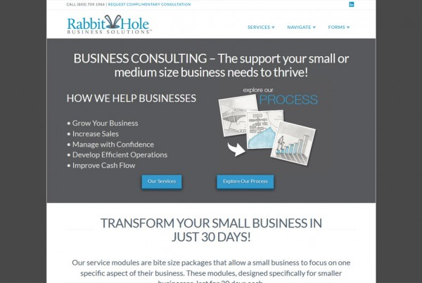 rabbit-hole-business-solutions-website-design